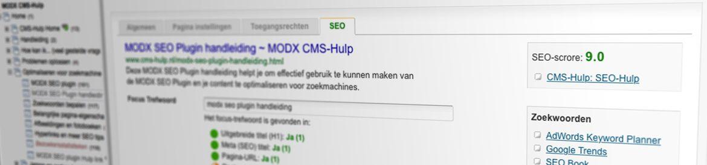 SEO Scan uitleg - MODX CMS-Hulp